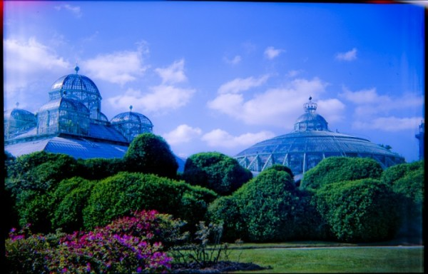 koninklijke serres en tuinen Brussel